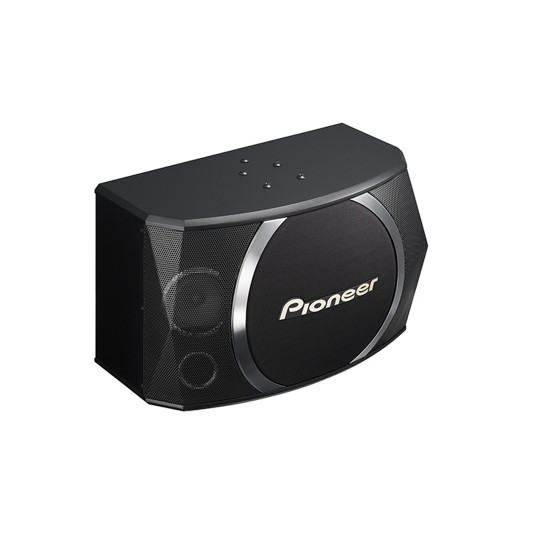 PIONEER CS-X100 KARAOKE SPEAKERS