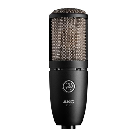 AKG P220 High Performance Large Diaphragm True Condenser Microph